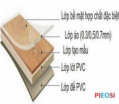 sàn gỗ công nghiệp có chống mối, cấu tạo sàn gỗ chống mối,